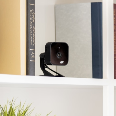 Roanoke indoor security camera
